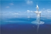 SeaOrbiter : la future station scientiifique mobile