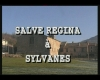 Salve Rgina à Sylvanes