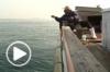 La lutte des pêcheurs d'Iwashima