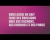 Campagne publicitaire de France 3 : 30 millions d'amis