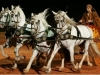 Ben-Hur entre dans l'arène du Stade de France