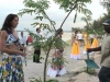 Miss France 2007 - Les Miss plantent un arbre à Maurice