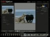 Adobe Lightroom 2/6 : La photothèque