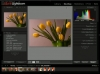 Adobe Lightroom 3/6 : le développement