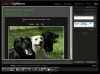 Adobe Lightroom 6/6 : la publication en ligne
